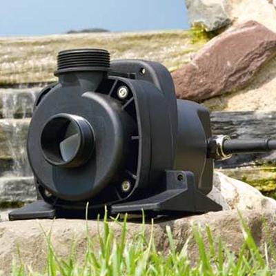 Aquamax 14000 Dry Leistungsstarke Pumpe Speziell Für Die